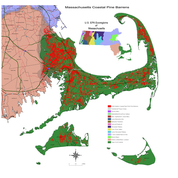 SE-Pine-Barrens-Alliance-eco-region (1)