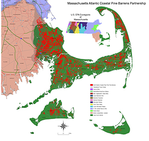 se_ mass_pine_ barrens_ecoregion